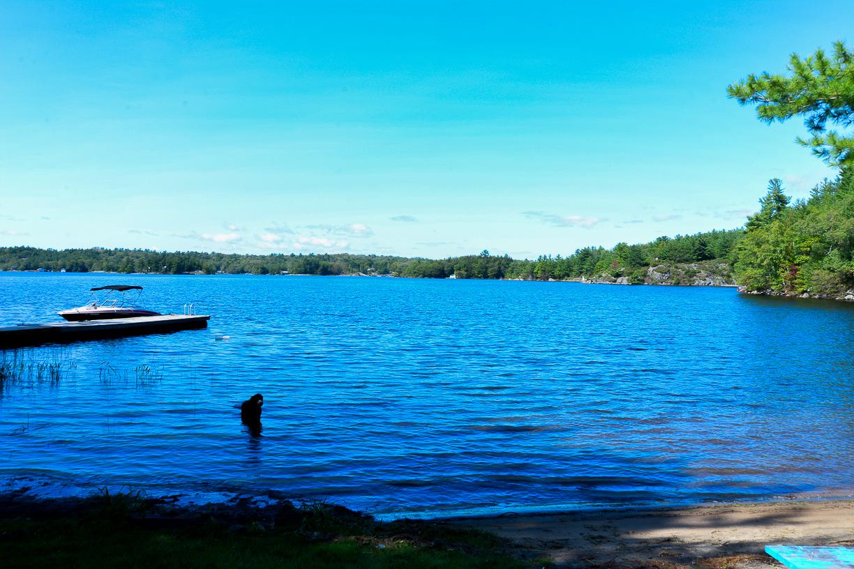 71 Georgian Bay Water, Archipelago, Ontario  P2A 2X5 - Photo 30 - 40024057